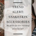 Snakeskin Accessories Trend for Fall