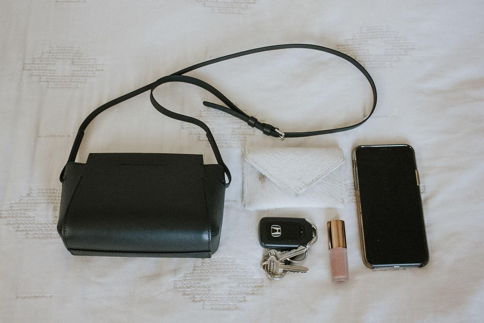 Everlane Micro Form Bag