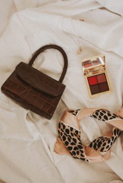 By Far Mini Bag, Rouje Lip palette and scarf