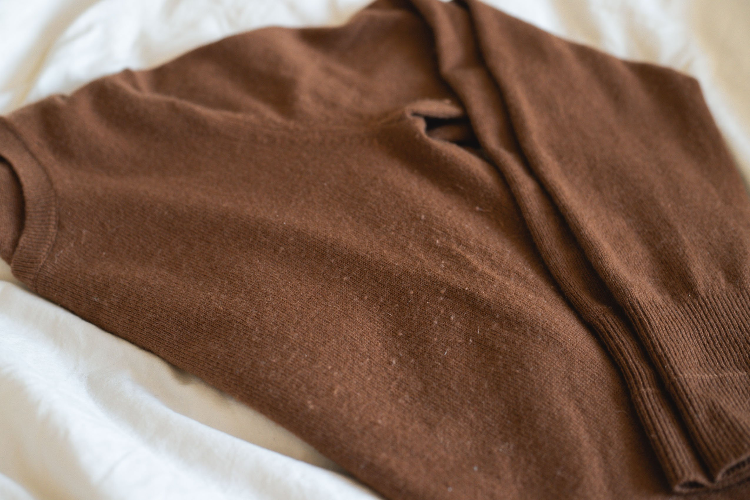 Close Up of Everlane Cashmere Sweater